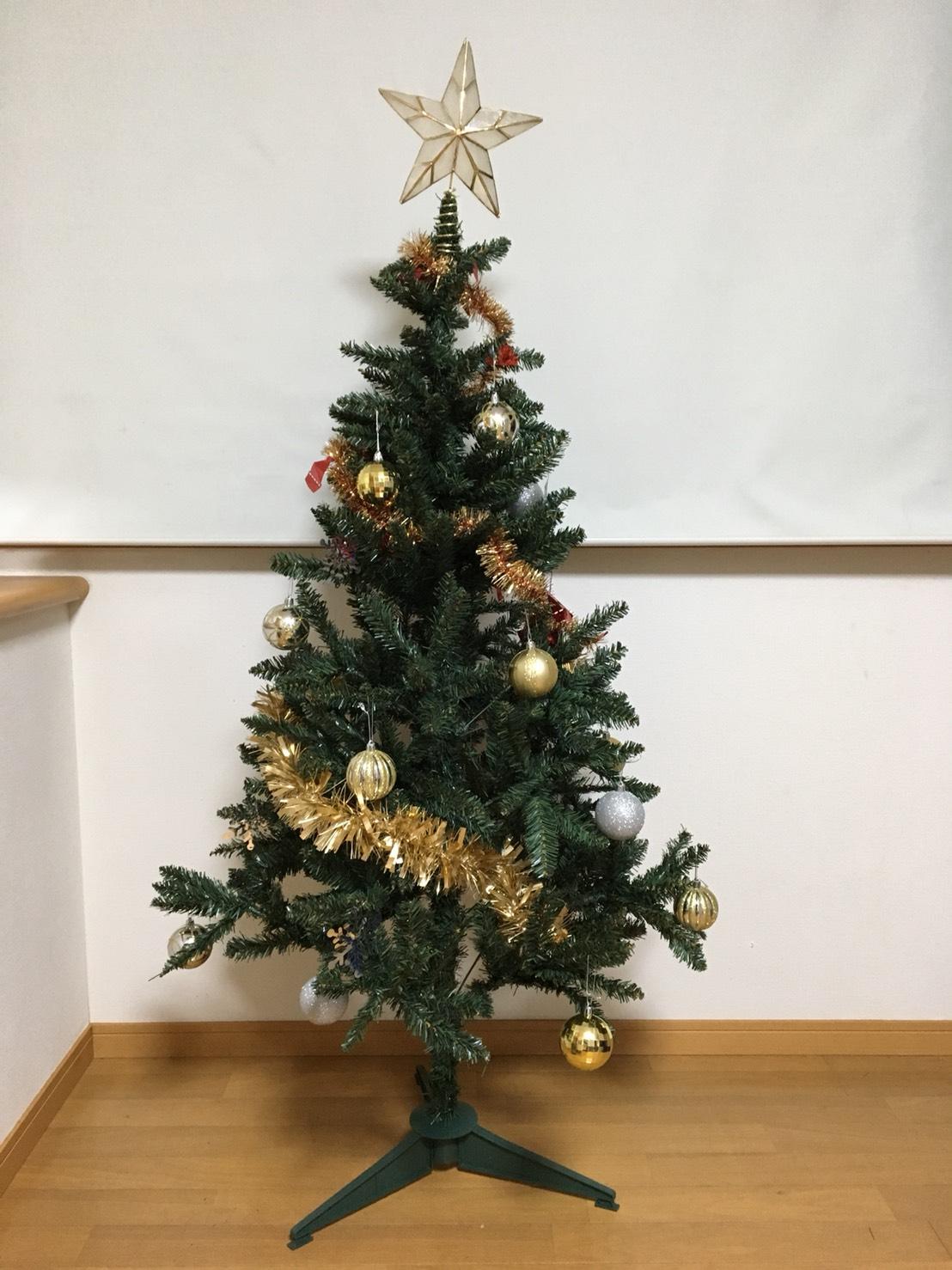 クリスマスツリーが来ました!