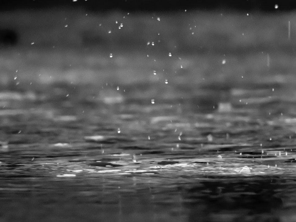5月28日 梅雨入りしましたね。